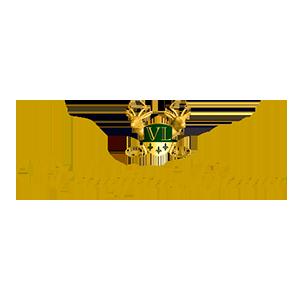 logo-vanajanlinna